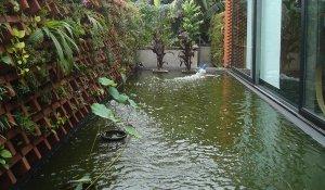 taman kolam 3