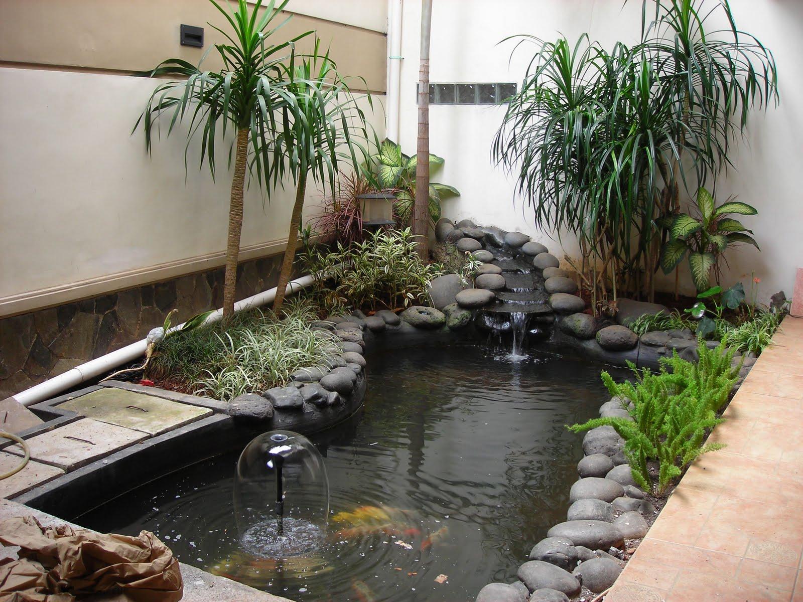 kolam taman eksotis dalam rumah | aksesoris taman minimalis | air terjun